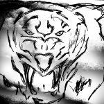 Khodam Macan Putih Soma Manta