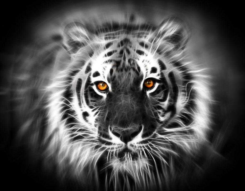 Energi Khodam Macan Putih